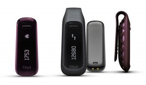 Fitbit One Test